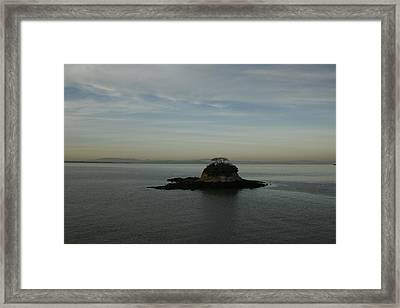 China Camp Island Framed Print by Suzanne Lorenz