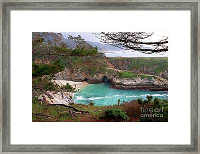 China Cove At Point Lobos Framed Print by Charlene Mitchell