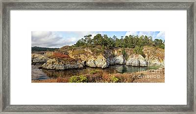 China Cove, Point Lobos Framed Print by Yair Karelic