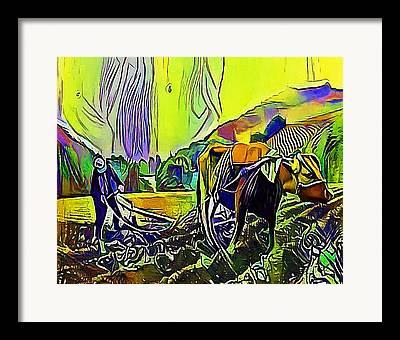 Agronomy Drawings Framed Prints