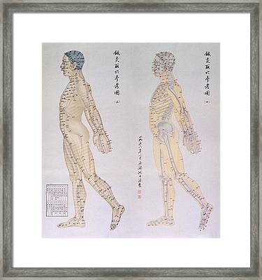 Chinese Chart Of Acupuncture Points Framed Print