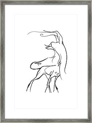 Chinese Crested Gesture Sketch Framed Print