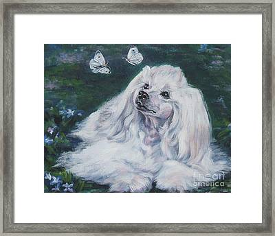Chinese Crested Powderpuff With Butterflies Framed Print by Lee Ann Shepard