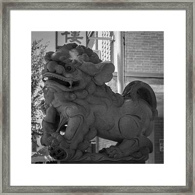 Chinese Guardian Female Lion B W Framed Print