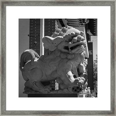 Chinese Guardian Male Lion B W Framed Print