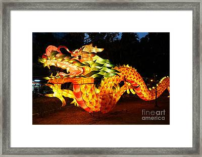 Framed Print featuring the photograph Chinese Lantern In The Shape Of A Dragon by Yali Shi