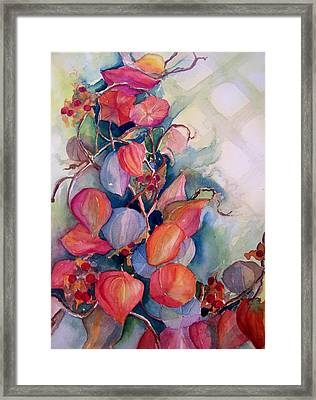 Chinese Lanterns Framed Print by Sandy Collier