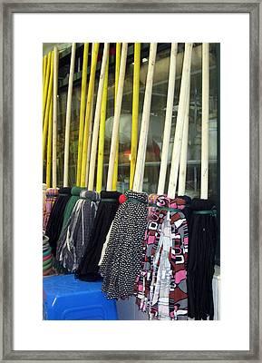 Chinese Rag Mops Framed Print by Lisa Boyd