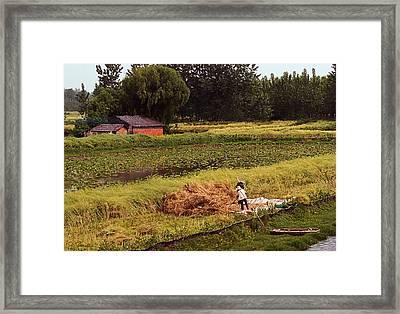 Chinese Rustic No. 2 Framed Print by Joe Bonita