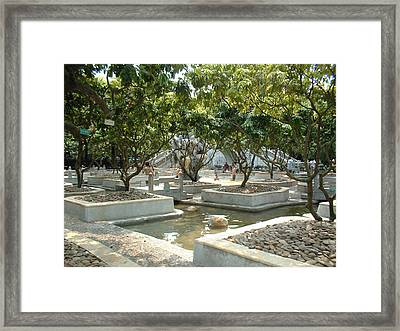 Chinese Water Garden Framed Print by Melissa Stinson-Borg