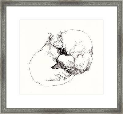 Chinky And Chang Framed Print by Roz McQuillan