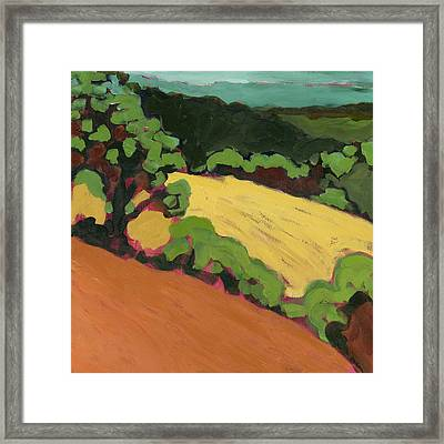 Chip Ross Park Framed Print