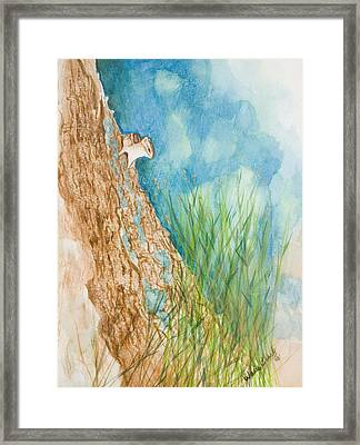 Chipmonk Framed Print