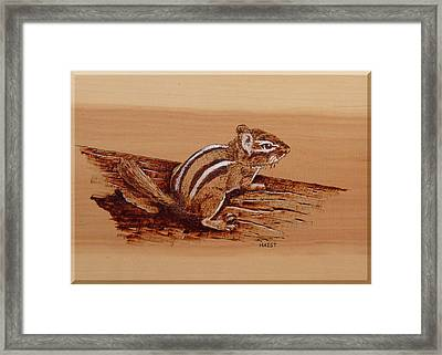 Framed Print featuring the pyrography Chipmunk by Ron Haist