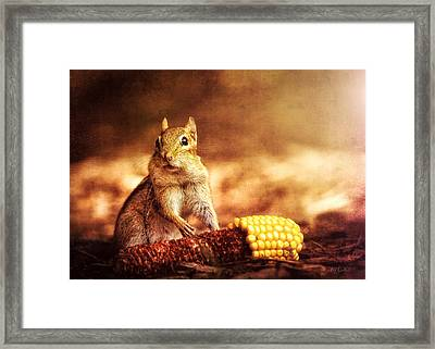 Chipmunk With Corn Framed Print