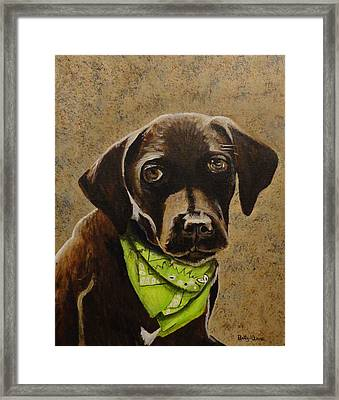 Chocolate Lab Framed Print by Betty-Anne McDonald