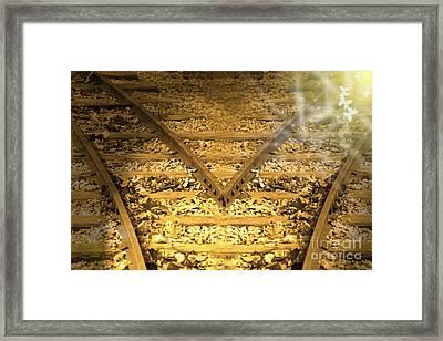 Choice 2 Framed Print by Cathy  Beharriell