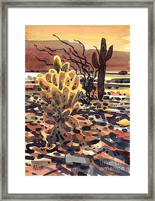 Cholla Saguaro And Ocotillo Framed Print