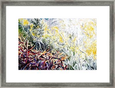 Cholla Sunrise Framed Print