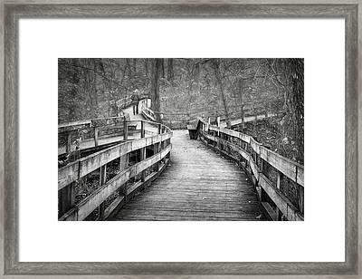 Chosen Path Framed Print by Nikolyn McDonald