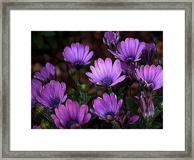 Framed Print featuring the digital art Morning Stretch by Stuart Turnbull