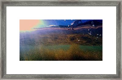 Christine Framed Print by Brad Scott