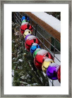 Christmas At Bayview Farm And Garden Framed Print by Tom Trimbath