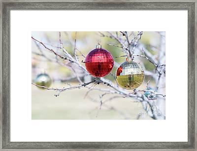 Christmas At The Park Framed Print