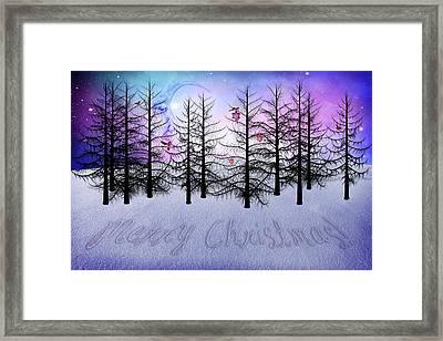Christmas Bare Trees Framed Print