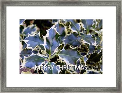 Christmas Card 2 - 2011 Framed Print