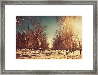 Christmas Day Stroll In The Park Framed Print