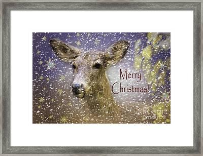 Christmas Deer Framed Print by Jean OKeeffe Macro Abundance Art