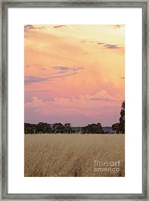 Framed Print featuring the photograph Christmas Eve In Australia by Linda Lees