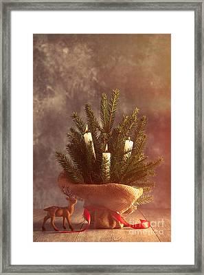 Christmas Firs Framed Print by Amanda Elwell