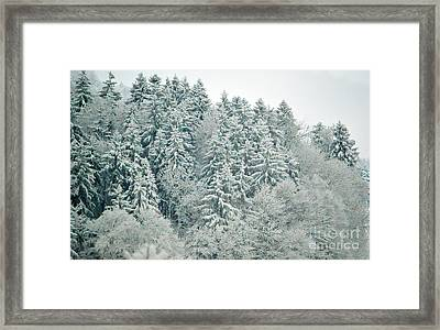Christmas Forest - Winter In Switzerland Framed Print