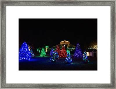 Christmas Garden 7 Framed Print