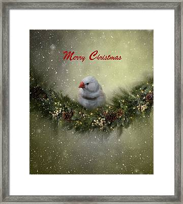 Christmas Greetings Framed Print by Kim Hojnacki