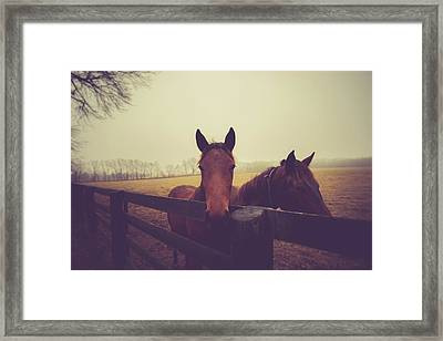 Framed Print featuring the photograph Christmas Horses by Shane Holsclaw