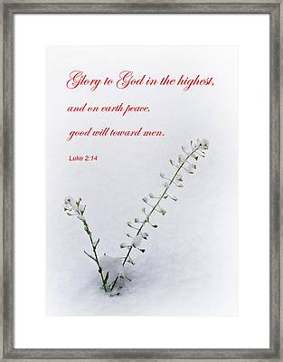 Christmas Joy Framed Print