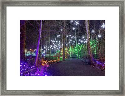 Christmas Lights Decoration Along Lafarge Lake Path Framed Print