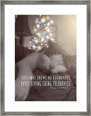Christmas Nap Quote Framed Print by JAMART Photography
