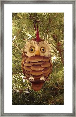 Christmas Owl Framed Print by Nikita Zabowski