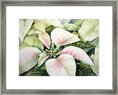 Christmas Poinsettias Framed Print by Bobbi Price