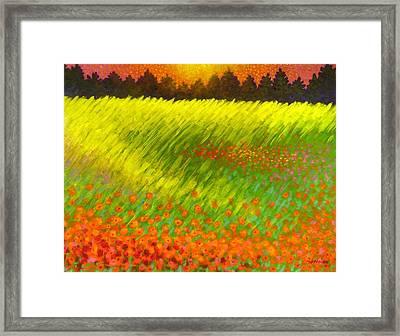 Christmas Poppies Framed Print