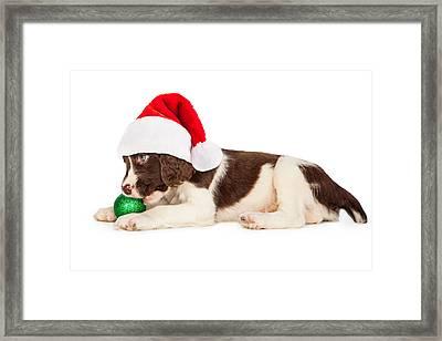 Christmas Puppy Santa Hat And Bulb Framed Print