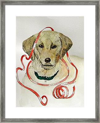 Christmas Puppy Framed Print by Terry Honstead