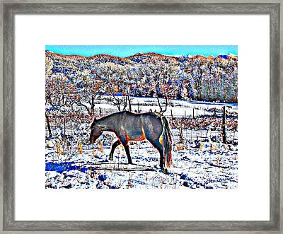 Christmas Roan El Valle II Framed Print by Anastasia Savage Ealy
