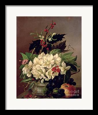 Holly Berry Still Life Framed Prints