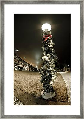 Christmas Season In Charleston Framed Print by Andrew Crispi