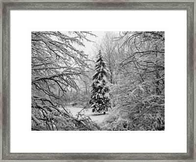 Christmas Snow Framed Print by Michael L Kimble